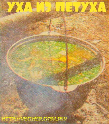 Uha-zolotistaya