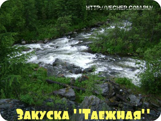 tayga-bolshoy On
